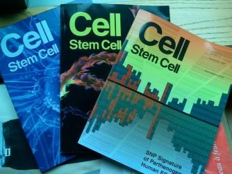 CellStemCellissues